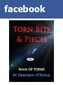 Torn Bits & Pieces @ Facebook