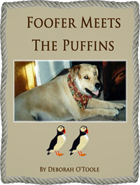 """Foofer Meets the Puffins"" by Deborah O'Toole"