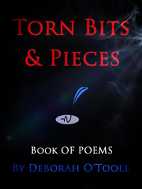 """Torn Bits & Pieces"" by Deborah O'Toole"